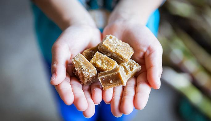 離島で生まれた「しまものマルシェ」の美味いもの3選!! 黒糖、車えび、ごま油の誕生秘話に迫る!