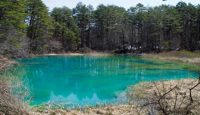 福島県『五色沼』の美しい小沼を巡るスマホ電波探検隊