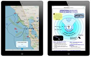 クジラを船との衝突から守る「モバイルアプリ」