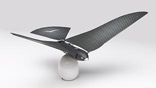 世界のドローン7 リアルすぎて鳥も間違う!? 鳥形ドローン「Bionic Bird」