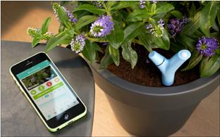 植物を育てるのに必要な情報が一目瞭然! これで花の気持ちが分かるかも!?